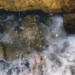 Mrekullitë mjekësore dhe shkencore të ujit të Zem Zemit