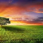 Në cilat periudha kohore paraqiten veprat tek Allahu?