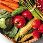 Dieta e shëndetshme në mjeksinë profetike