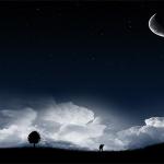 Adhurimi i Allahut në një natë është më i mirë sesa adhurimi i Tij në tridhjetë mijë net!