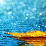 Duatë kur bie shi