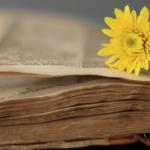 Kurimi i cytjeve (vesveseve) të shejtanit në besim