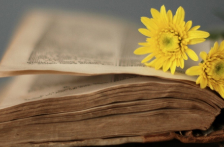5 porosi nga Profeti (alejhi selam)