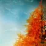 Si të lirohemi nga zjarri?