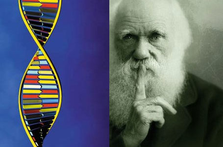 Përsosmëria e ADN-së hedh poshtë Teorinë e Evolucionit.