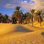 Si i keshillonte Profeti alejhi selam shoket e tij?