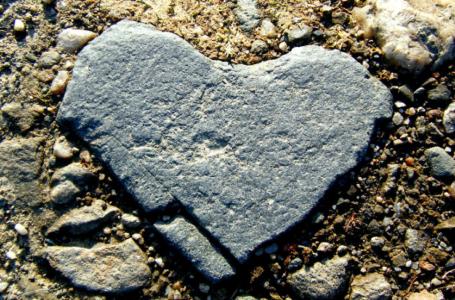 Mesoje zemren tende te reflektoje me keto 6 gjera